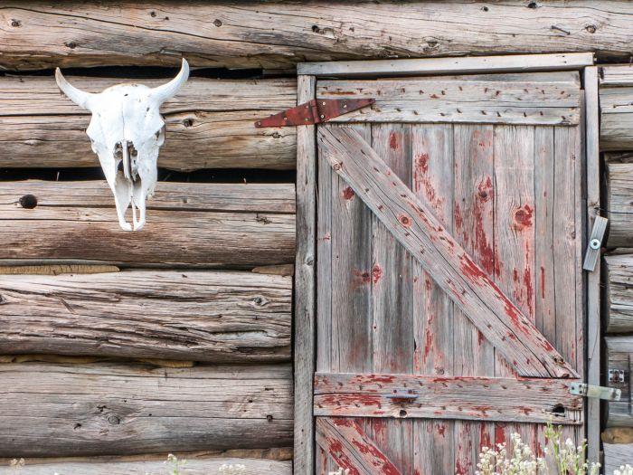 Medano Colorado 1004 Valley Luis San Luis San Zapata Ranch 1OwOY