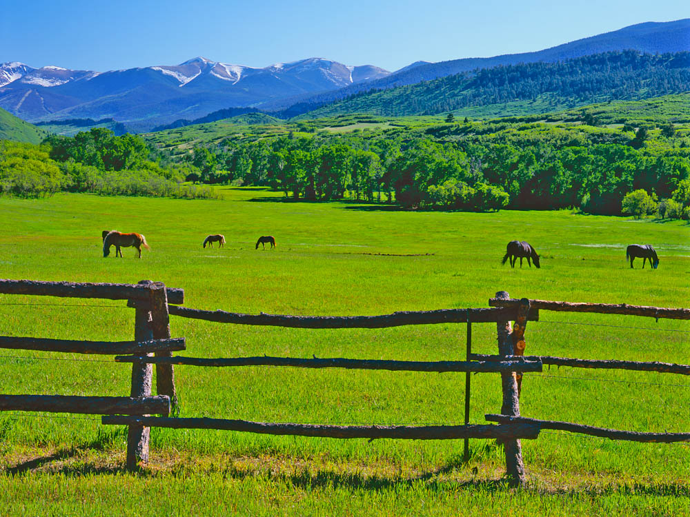 Colorado Ranches