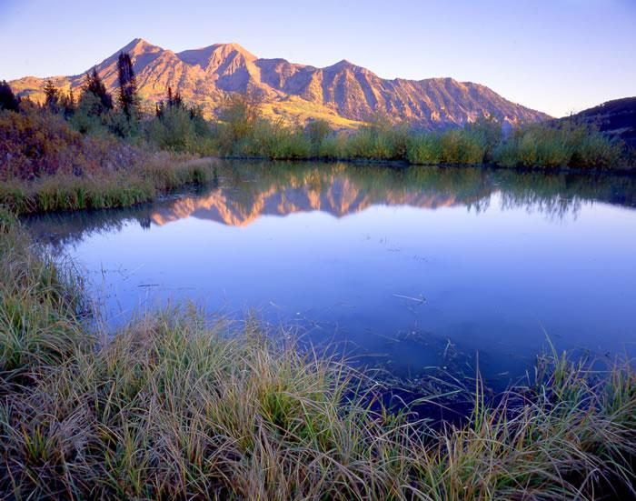 0554 west elk beaver pond west elk wilderness near crested butte